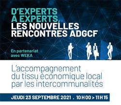 Webinaire - L'accompagnement du tissu économique local par les intercommunalités