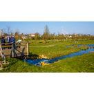En Moselle, une station d'épuration pilote attire cigognes et hérissons (57)
